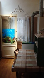 Комната в коммуне (свое-от хозяина,  недорого,  небольшая) в центре Одес