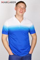 Мужские летние тенниски (поло) и футболки;  мужские летние шорты;  опт