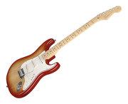 Поставка гитар от производителя.Годовая гарантия.Экономия до 15%.