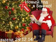 Новый год  в Болгарии  с   выездом  из  Одессы