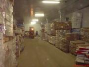 склады. аренда холодильников для  мяса и рыбы