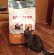 Оригинальные корма для животных фирмы Royal Canin