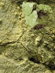 Зеленая глина
