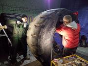 Ремонт кгш и восстановление шин под гарантию в Одессе