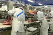 Работа для мужчин в Польше на мясокомбинате