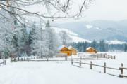 Зимний отдых в Карпатах. Новогодние и рождественские туры в Карпаты.