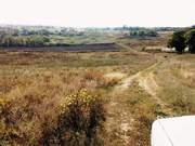 Продам красивый плодородный участок 1Га с коммуникациями 65км от Одесы