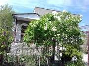 Дача,  сад,  село Кошары,  город Южный,  Одесская область,  продам