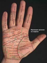 Хиромант: услуги хиролога Украина