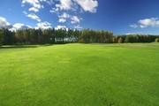 Продам срочно  3 пая земли сельхозназначения
